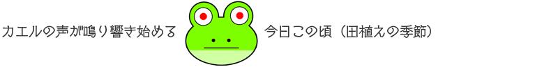 20160527_KAERU